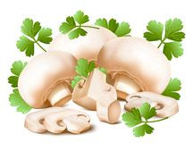 Mushrooms with parsley. Royalty Free Stock Photo