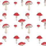 Mushrooms Pattern royalty free stock photo