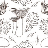 Mushrooms pattern Royalty Free Stock Images