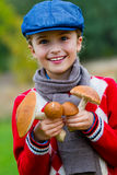 Mushrooms picking, season for mushrooms. Stock Photography