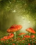 Mushrooms by a pond. Red fantasy mushrooms by a pond Stock Image