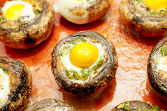 Mushrooms with quail`s eggs Stock Photos