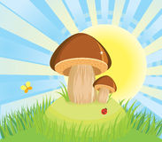 Mushrooms in raining day.Vector cartoon background Royalty Free Stock Photos