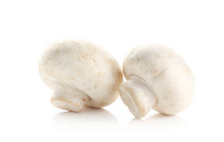 Mushrooms and raw mushrooms  on white background Royalty Free Stock Photos