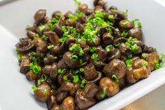 Mushrooms Scallion Salad Royalty Free Stock Photography