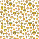 Mushrooms seamless pattern Royalty Free Stock Images