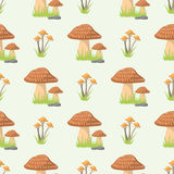 Mushrooms seamless pattern different types of nature food background cook flat style vegetable season champignon Stock Image