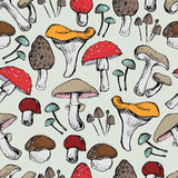 Mushrooms Seamless pattern Stock Images