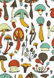 Mushrooms, seamless pattern for your design Stock Photo