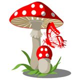 Mushrooms set 004. Mushrooms with butterfly set 004 vector illustration