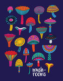 Mushrooms set in hallucinogenic colors Stock Image