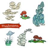 Mushrooms Set Stock Images
