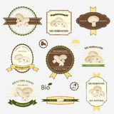 Mushrooms, set of label design Stock Photography