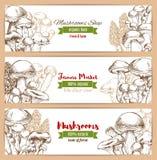Mushrooms shop vector sketch banners set Stock Photos