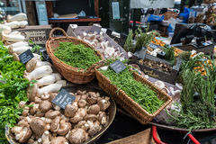 Mushrooms sold at Borough Market in London, UK. Various assortment of mushrooms sold at Borough Market in London, UK Stock Photography