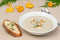 Mushrooms soup Stock Images