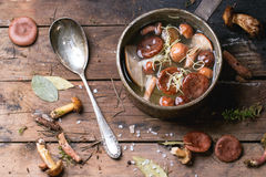 Mushrooms soup Royalty Free Stock Images