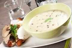 Mushrooms soup Stock Image