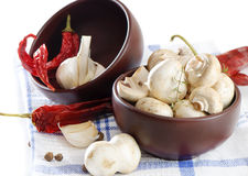 Mushrooms and spices Stock Photos
