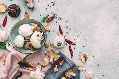 Mushrooms and spices over grey background. Copy space. stock image