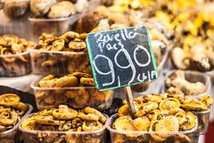 Mushrooms at a stand in the Boqueria Market, in Barcelona, Spain. Royalty Free Stock Images