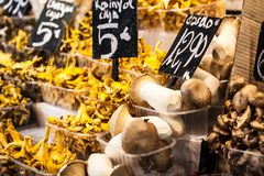 Mushrooms at a stand in the Boqueria Market, in Barcelona, Spain. Stock Photo