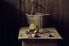 Mushrooms. Still life with a basket of mushrooms Stock Photo