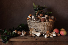 Mushrooms. Still life with a basket of mushrooms and apples Royalty Free Stock Photography