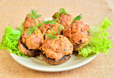 Mushrooms stuffed with mead Stock Photos