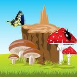 Mushrooms beside stump Stock Photos