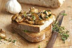 Mushrooms on toast Stock Photos