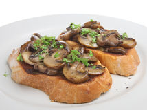 Mushrooms on Toast Royalty Free Stock Photos