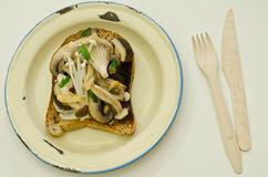 Mushrooms on toast on an old enamel plate Stock Photo
