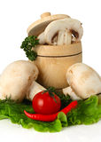 Mushrooms and tomato on white background Royalty Free Stock Photography