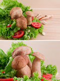 Mushrooms, tomatoes, green salad and garlic Stock Images