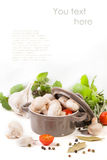 Mushrooms, tomatoes and herbs over white Stock Photos