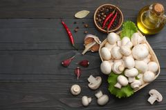 mushrooms with tomatoes, parsley, oil, garlic, chili pepper, peppercorns on dark wooden background. top view Stock Photo