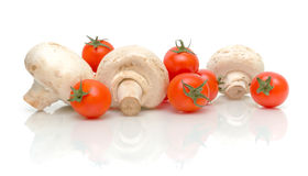 Mushrooms and tomatoes on a white background Stock Image