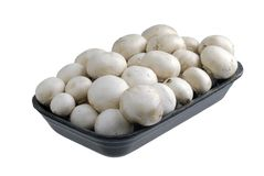Mushrooms in tray Royalty Free Stock Image