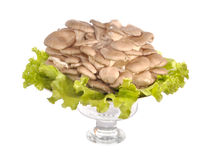 Mushrooms in a vase on leaves of salad. Mushrooms champignons lay in a glass vase on leaves of salad Stock Photo