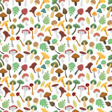 Mushrooms vector illustration seamless pattern Royalty Free Stock Image