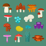 Mushrooms vector illustration set Stock Photos
