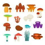 Mushrooms vector illustration set Royalty Free Stock Photo