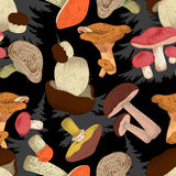Mushrooms . Vector seamless background . Botany. Cooking . Engraving. Floral pattern. Nature. Food. Forest. Paper. Stock Image