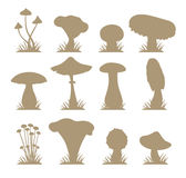Mushrooms vector silhouette icons illustration set Royalty Free Stock Images