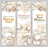 Mushrooms vector sketch farmer market banners set Stock Image