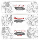 Mushrooms vector sketch organic shop banners Stock Photography