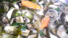 Mushrooms with vegetables frying in greek olive oil stock video footage