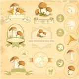 Mushrooms, Royalty Free Stock Photo