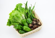 Mushrooms and vegetables. The picture is  some  mushrooms ,green peppers and romaine lettuce Stock Images